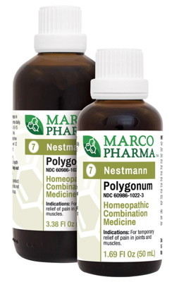 Polygonum  No. 7 100 ml