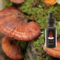 Red Reishi Immunity/Brain Reboot Coffee Additive/Tincture