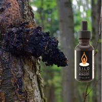 Chaga Immunity/Brain Reboot Coffee Additive/Tincture