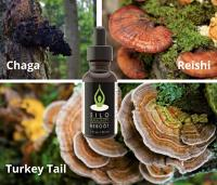 Immunity 3-Species Blend Mushroom Coffee Additive/Tincture